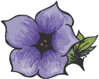Little Purple Petunia